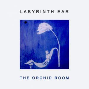 labyrinth-ear