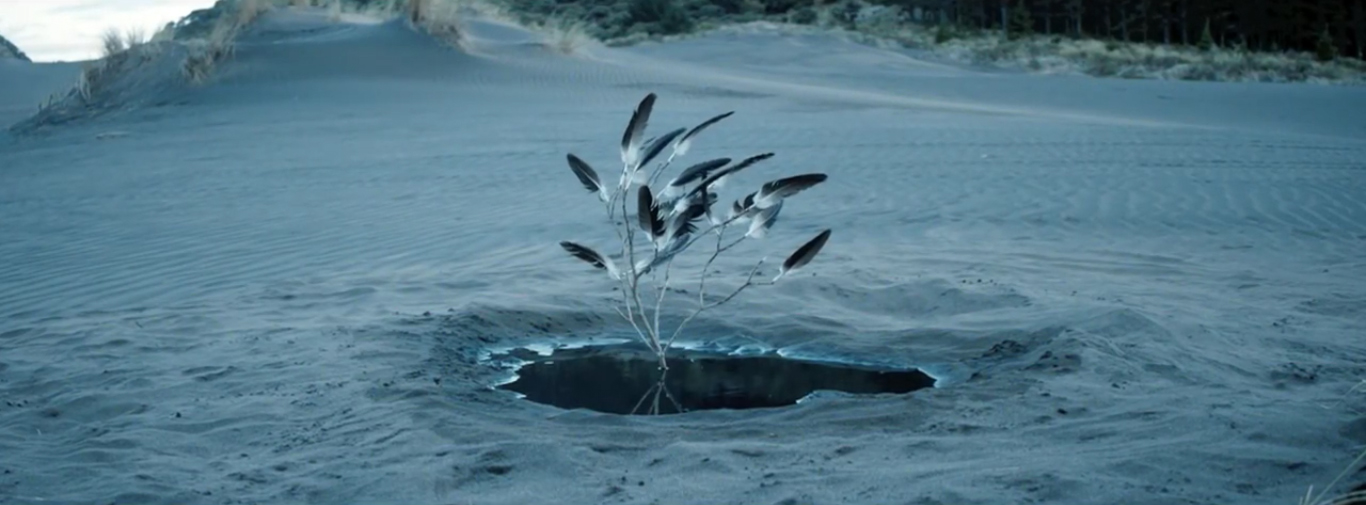manifesto-xxi-the veils-axolotl