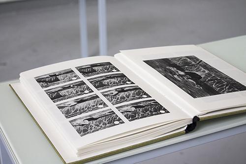 Specimen, 2016, 12 livres d'installation ©Lucie Planty