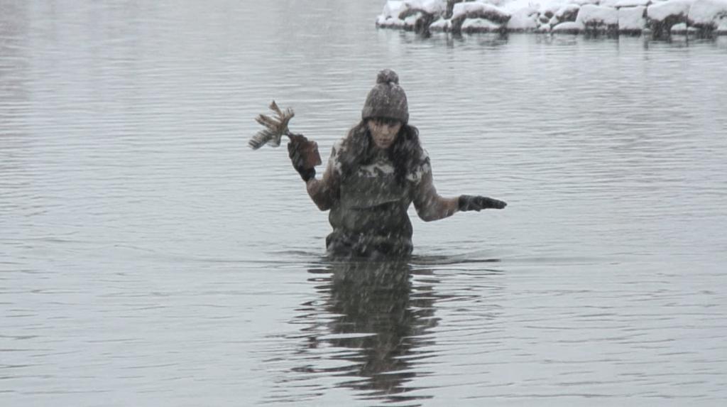 Alice Guittard, Hola Vefur Loð, 1% d'arbres en Islande, 2012, video, 10'
